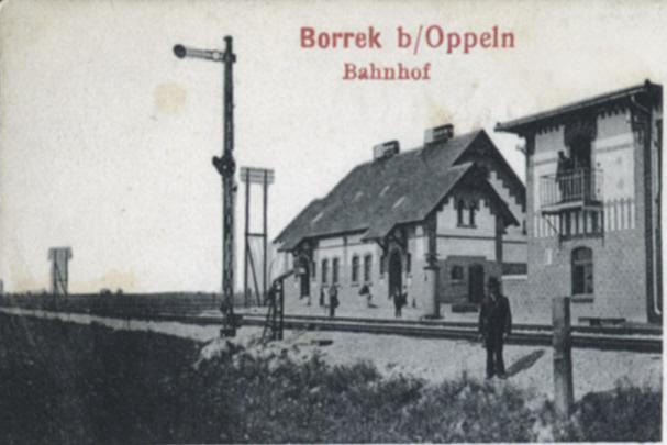 Andrea Borrek
